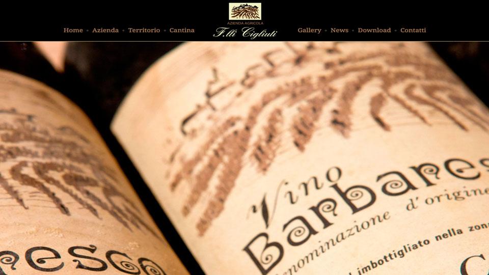 realizzazione siti web Alba e Cuneo