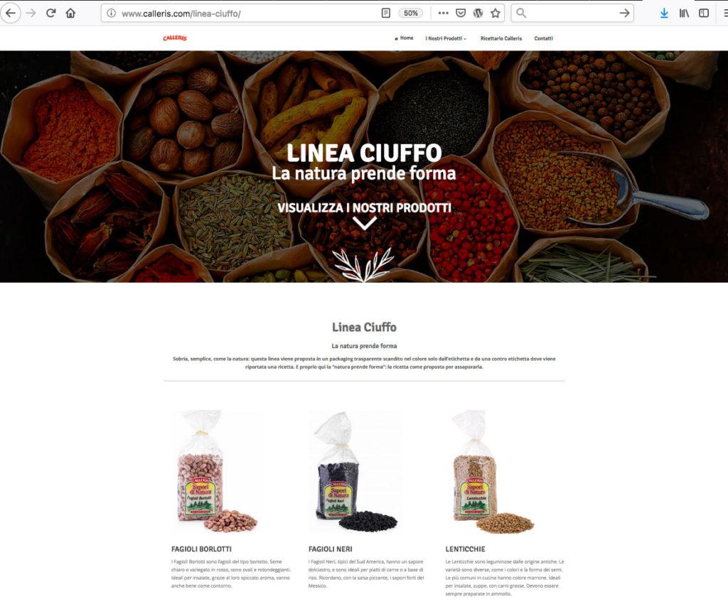 Realizzazione sito Web agency Alba